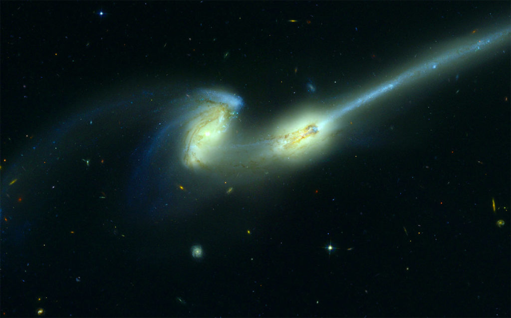 The galaxies known as The Mice, an alternative interpretation of stellar-level rodent research.